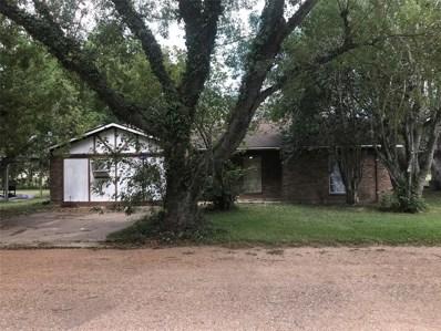 6714 Woods Lane, Wallis, TX 77485 - #: 41251605