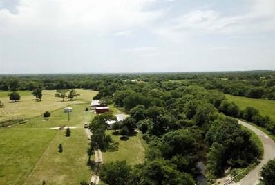 4767 Countyroad 185, Anderson, TX 77830 - #: 41688373