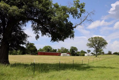 4767 County Rd 185, Anderson, TX 77830 - #: 41924113