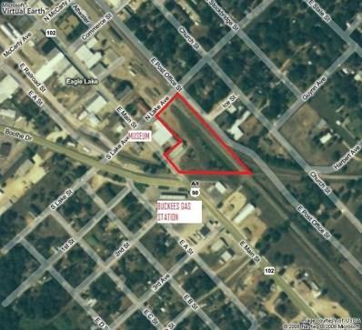 416 & 418 E Main Street, Eagle Lake, TX 78940 - #: 42399565