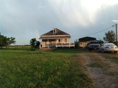 1622 County Road 15, Damon, TX 77430 - #: 42679894