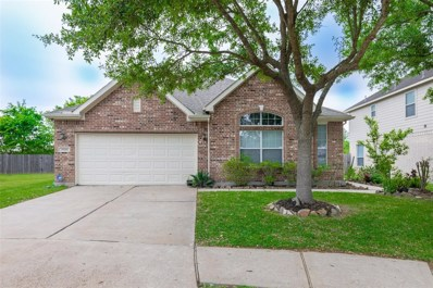 18218 Linden Forest Lane, Katy, TX 77449 - #: 43414487