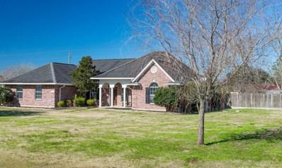 36630 Broncho Road, Simonton, TX 77485 - #: 44040829