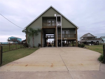 1095 County Road 201, Sargent, TX 77414 - #: 44650398