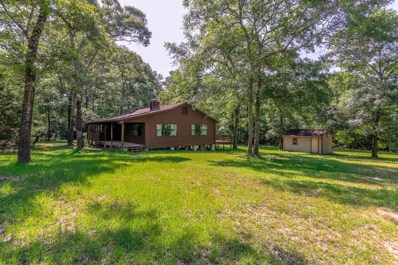 8388 Hickory Road, Plantersville, TX 77363 - #: 44856556