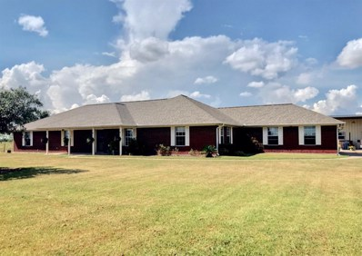 1405 County Road 18, Damon, TX 77430 - #: 45220134