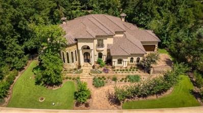 15 Primm Valley Court, Spring, TX 77389 - #: 45824762