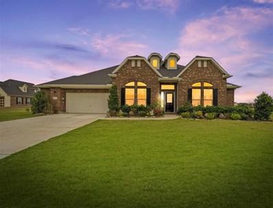 10510 Caddo Lake Drive, Needville, TX 77461 - #: 45908048