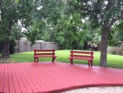 20703 Riviere Lane, Spring, TX 77388 - #: 45930890