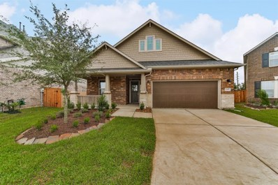 19455 Gray Mare Drive, Tomball, TX 77377 - #: 46167391