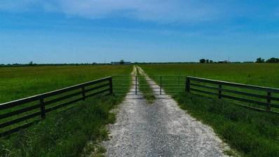 Tbd County Road 132, Bedias, TX 77831 - #: 46569308