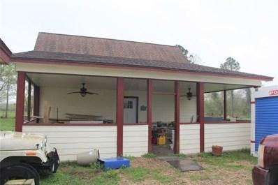 1225 Carl Drive, Angleton, TX 77515 - #: 47148468