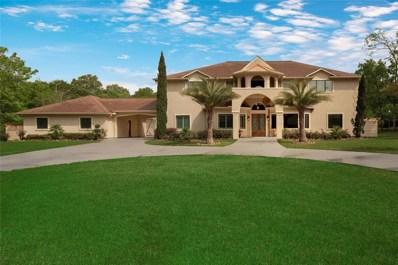 11538 Vintage Oaks Drive, Montgomery, TX 77356 - #: 48223599