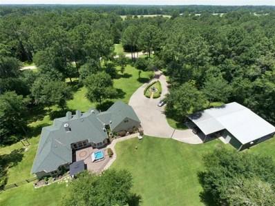 24882 Tenn Oaks Lane, Hockley, TX 77447 - #: 48819309