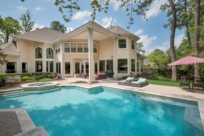 22 Snow Pond Place, The Woodlands, TX 77382 - #: 48828863