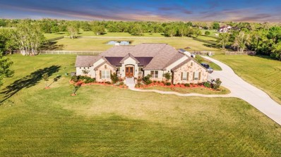 16611 Suncreek Ranch, Rosharon, TX 77583 - #: 48846658