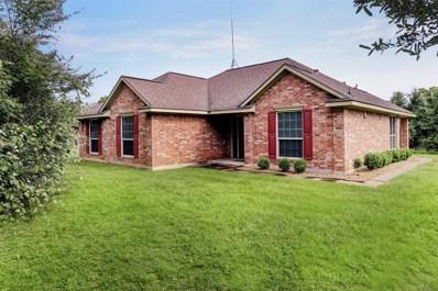 4388 Oak Street, San Felipe, TX 77473 - #: 49892266