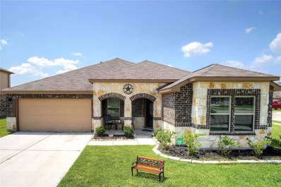 33 Indian Palms Drive, Manvel, TX 77578 - #: 50125102
