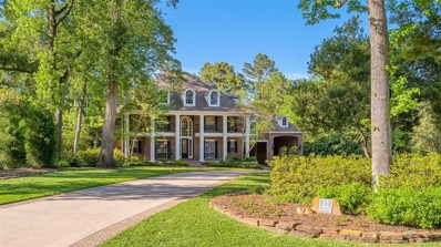 27 N Longspur Drive, The Woodlands, TX 77380 - #: 51439402