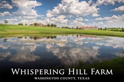 4740 Mustang Road, Brenham, TX 77833 - #: 52446186