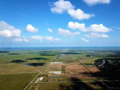 19 Clements Road, Sargent, TX 77414 - #: 5420067