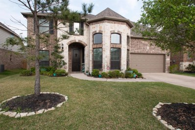 9923 Clear Diamond Drive, Rosharon, TX 77583 - #: 54258214