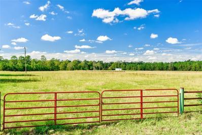 941 County Road 2014, Newton, TX 75966 - #: 54308182