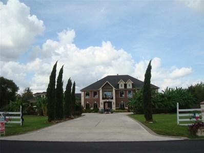 6597 Scott Road, Pearland, TX 77581 - #: 54526317