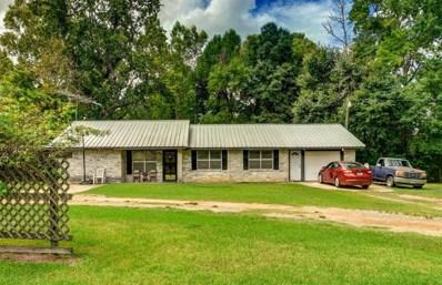 1780 S Byrd Avenue, Shepherd, TX 77371 - #: 56107367