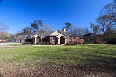 304 Magnolia Road, Woodbranch, TX 77357 - #: 56674020
