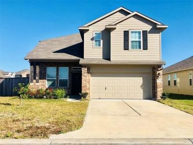 10134 Mariposa Stream Court, Houston, TX 77044 - #: 59040265