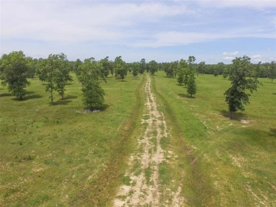 Tbd Jewell Coleman Road, Livingston, TX 77351 - #: 59871105