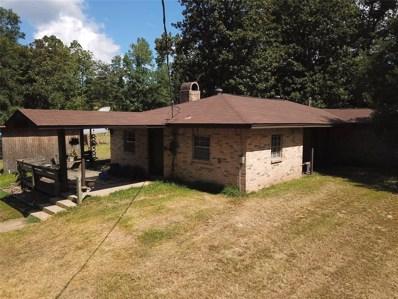 11195 Magnolia Drive, Willis, TX 77378 - #: 60526301