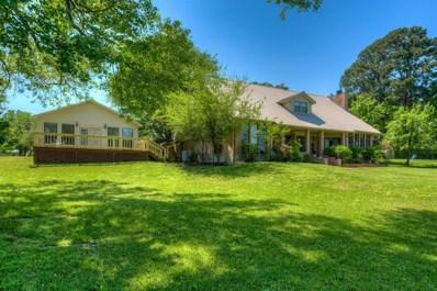 31 Edgewater Terrace, Coldspring, TX 77331 - #: 60529149