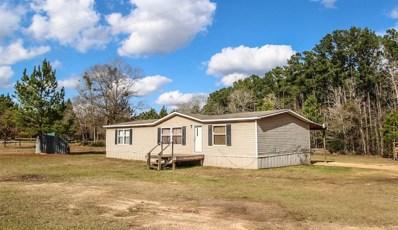 163 Turkey Creek, Livingston, TX 77351 - #: 60629016