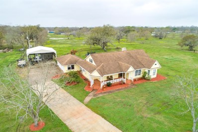 124 Country \/ Cr 609A Rd, Angleton, TX 77515 - #: 61743265