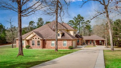8995 Forest Lake, Montgomery, TX 77316 - #: 62202882