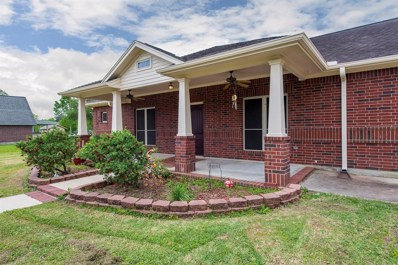 13733 Mount Vernon Street, Santa Fe, TX 77510 - #: 62742362