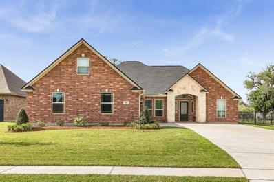 58 Deerwood Court, Lake Jackson, TX 77566 - #: 63056408