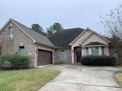 131 Wick Willow Drive, Montgomery, TX 77356 - #: 6313573