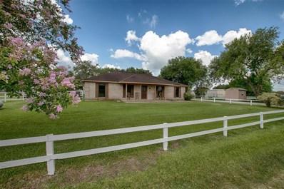 4545 County Road 541, Alvin, TX 77511 - #: 63196574