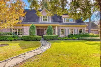13 Robinwood Lane, Houston, TX 77024 - #: 63598507