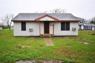807 W 6th Street, Freeport, TX 77541 - #: 65058645