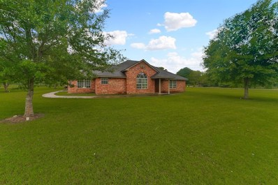 4353 Houston Street, Sealy, TX 77474 - #: 65285194