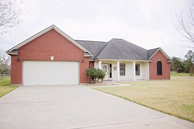 2511 Turberry Drive, West Columbia, TX 77486 - #: 69005112