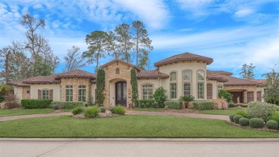 45 Post Shadow Estate Drive, Spring, TX 77389 - #: 69981383