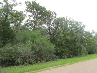 E Old Lockhart Road E, Plum, TX 78952 - #: 70753278