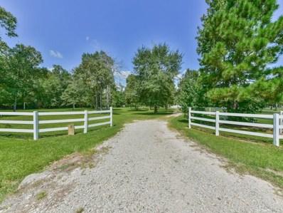 2 Ranch Creek Way, Magnolia, TX 77354 - #: 71753042