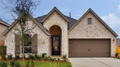 117 South Bearkat Court, Montgomery, TX 77316 - #: 71977714