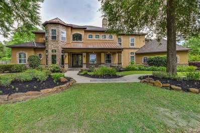 17102 Lakeway Park, Tomball, TX 77375 - #: 72411175